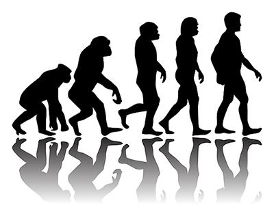 EVOLUCIA (400x300)