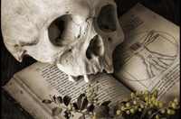 """""""Skull and Wattle"""". (Photo by Kevin Best)"""